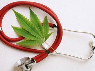 marihuana-detener-propagacion-canceres-agresivos