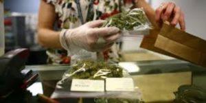 marihuana-promulga-ley
